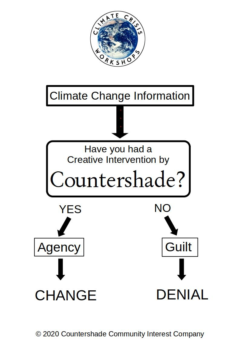 Image showing flow chart of how intervention with Countershade leads to action and change